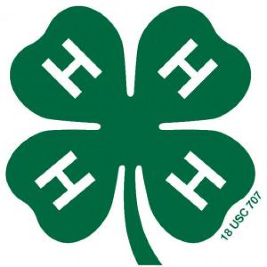 Learn by doing - join 4-H